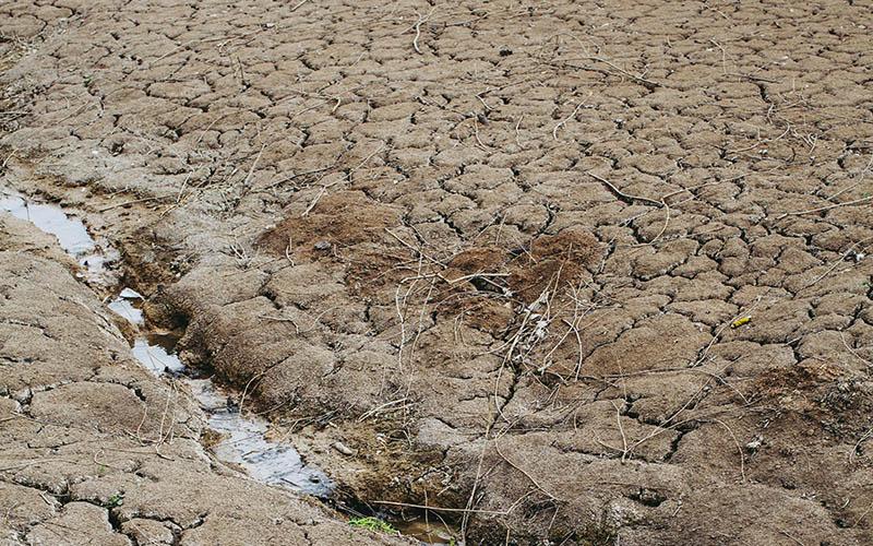 Drought. Credit: Markus Spiske, Unsplash
