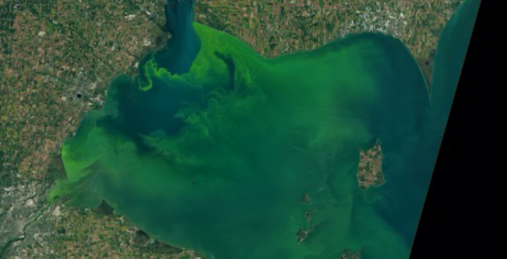 NASA image of body of water surrounded by a community. Credit: Joshua Stevens