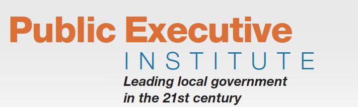 Public Executive Institute
