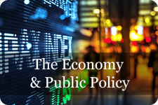 economy and public policy