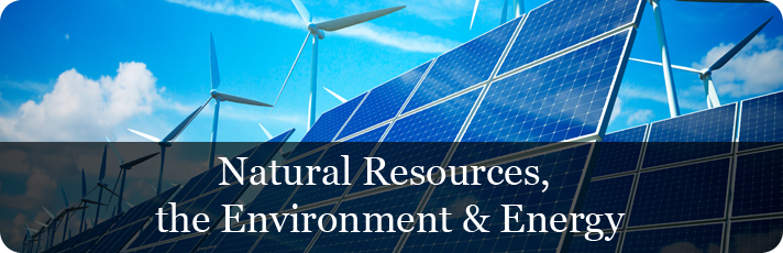 Natural Resources, the Environment and Energy